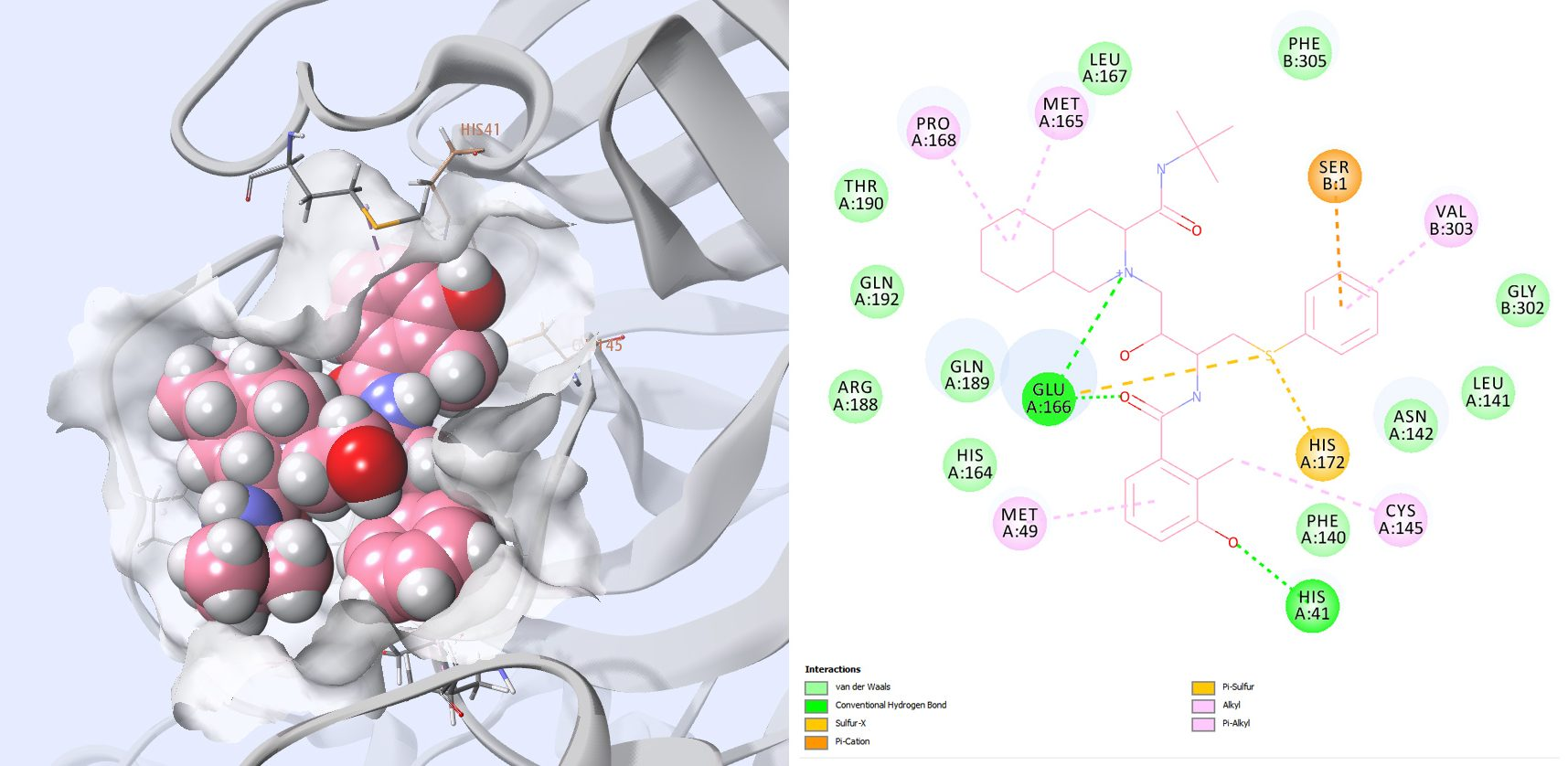 Figure 10: 3D view video and 2D interaction map of Nelfinavir with SARS-CoV-2 protease
