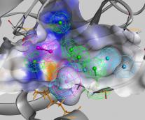 Pharmacophore-guided Virtual Screening for Drug Repurposing