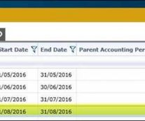 Locking Data via Account Period in GEOVIA InSite
