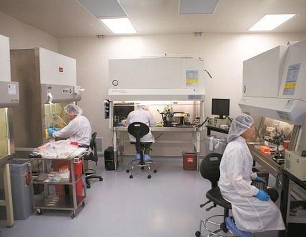 ヒト臓器のオンデマンド製造が視野に? 3D バイオプリンティング によって開かれる移植と治療の新たな展望