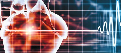 LIFE SCIENCES 人間の シミュレーション : 3D モデリングが開く新しい医学研究の道