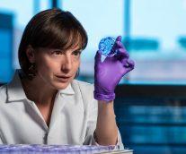 【プレシジョン医療】遺伝子配列解析技術が実現する、 個々の患者に合った的確な医療