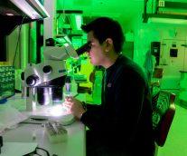 【バッテリーの力】新たな需要を満たすため競ってリチウムイオンセルの改良を進める研究者たち