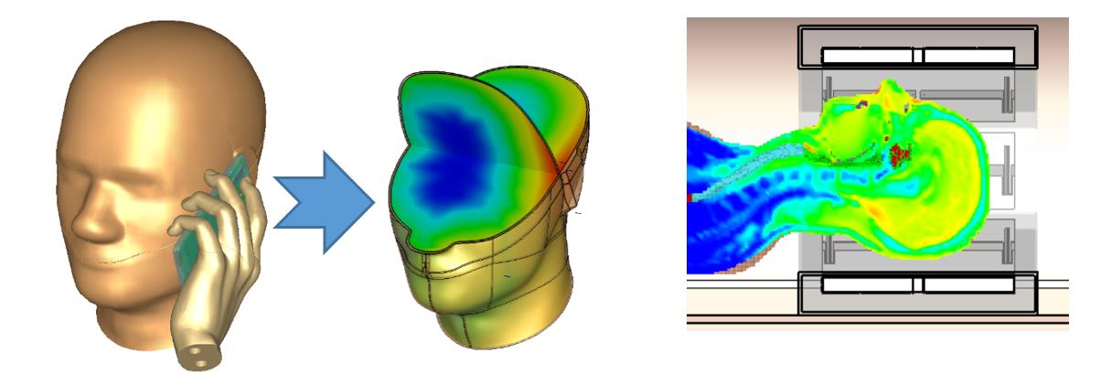 (좌) 3.6GHz 5G 스마트폰의 전자파에 의한 인체 영향성 분석 / (우) 의료기기의 전자파에 의한 인체 영향성 분석