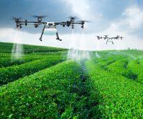 How Digital Technology Will Save the Family Farm