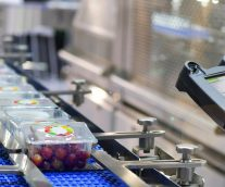 What's Driving Change in Food Manufacturing
