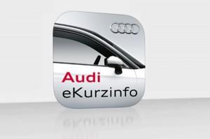 AUDI eKurzinfo 01