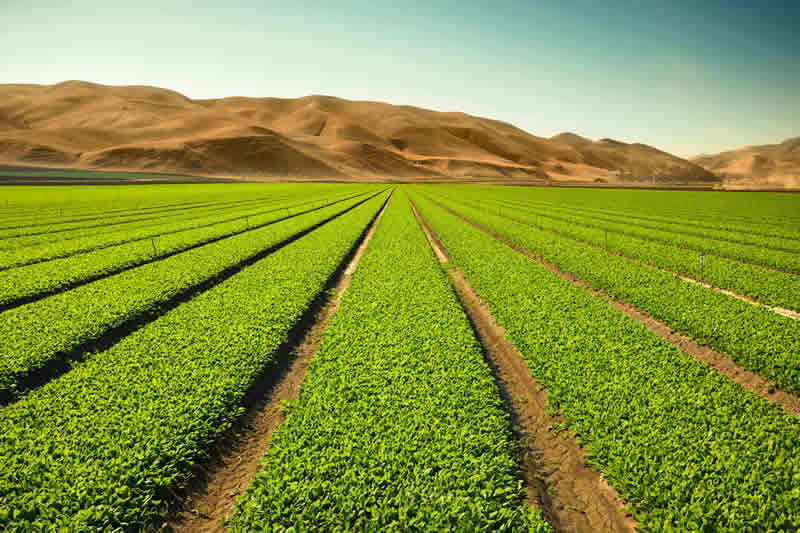 growing up around agriculture Although news coverage around them is mostly focused on use in military operations, drones can be used across multiple industries  growing the use of drones in agriculture  industry in the .