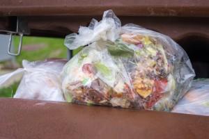 open dumpster full of trash